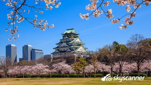 ชมดอกซากุระบาน กับ 3 เมืองเด่นที่ไม่ควรพลาด ในญี่ปุ่น