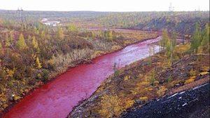 โรงงานผลิตโลหะ เปิดปากรับ ทำแม่น้ำในรัสเซียกลายเป็นสีเลือด