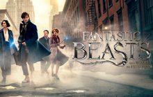 Fantastic Beasts and Where to Find Them สัตว์มหัศจรรย์และถิ่นที่อยู่