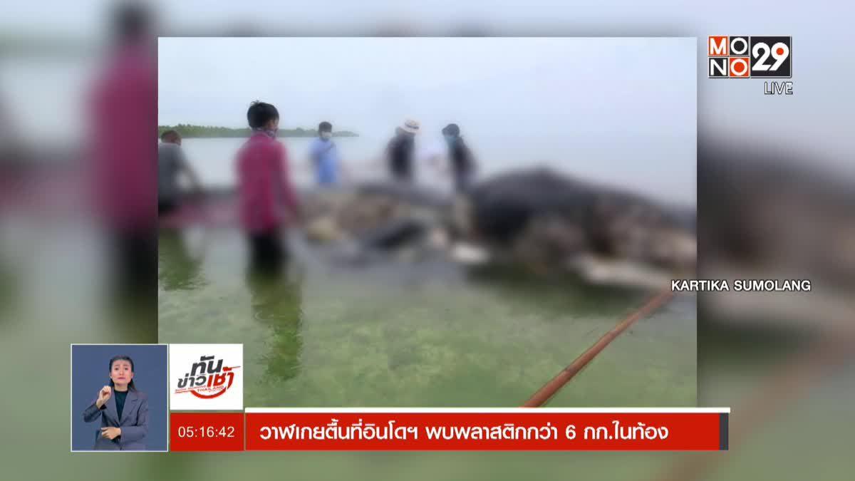 วาฬเกยตื้นที่อินโดฯ พบพลาสติกกว่า 6 กก.ในท้อง
