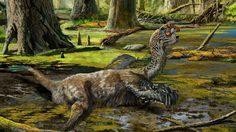 พบโครงกระดูกไดโนเสาร์สายพันธุ์ใหม่ มังกรโคลน ที่ประเทศจีน