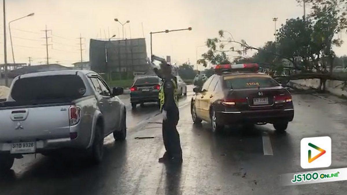 พายุพัดต้นไม้และเสาไฟล้มเป็นแนวยาว ขวางถนนเอเซีย อยุธยาฯ รถพังเสียหายหลายคัน (20-04-2561)