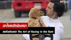 พบกับสุนัขที่จะมาสอนคนทั้งโลกในการเป็นคน จากตัวอย่างแรก The Art of Racing in the Rain