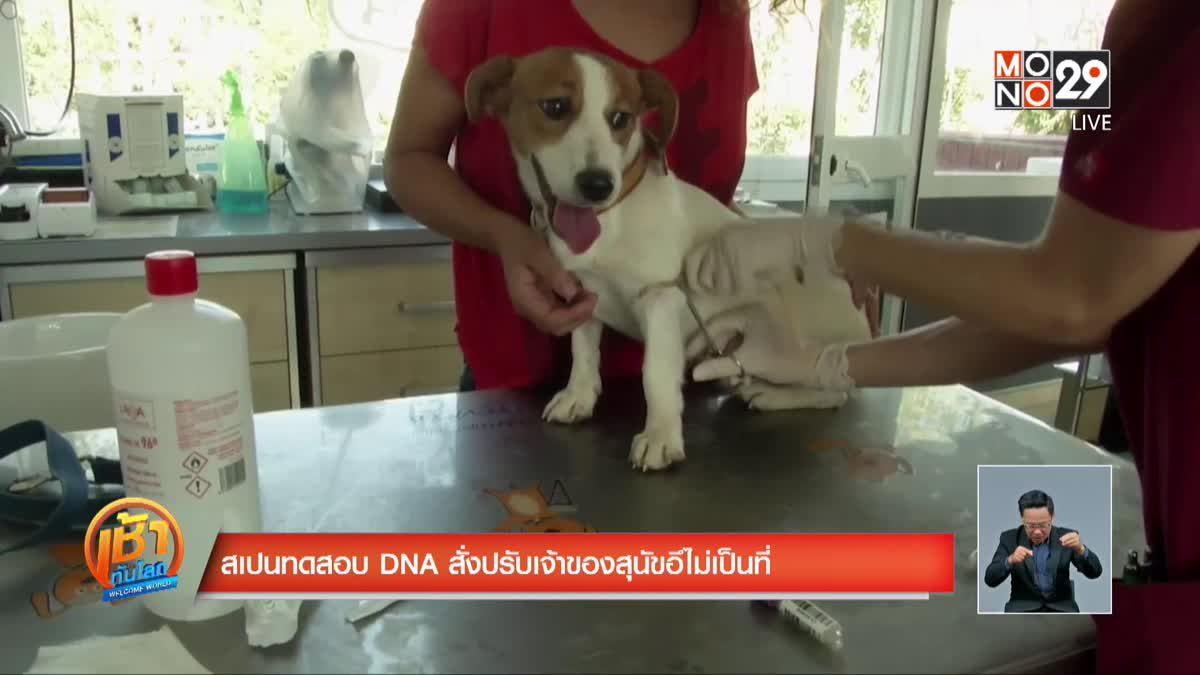 สเปนทดสอบ DNA สั่งปรับเจ้าของสุนัขอึไม่เป็นที่