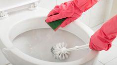4 เคล็ดลับง่ายๆช่วย ทำความสะอาดชักโครก ในบ้าน