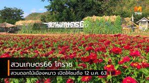 ปักหมุดเที่ยว สวนเกษตร66 สวนดอกไม้เมืองหนาวแห่งโคราช