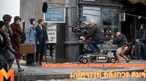 """""""Fantastic Beasts and Where to Find Them"""" คอนเฟิร์มความยิ่งใหญ่อลังการตระการตาในระบบ 3D"""