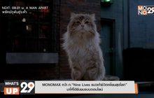 """MONOMAX คว้า ภ.""""Nine Lives แมวเก้าชีวิตเพี้ยนสุดโลก"""" มาให้ได้รับชมแบบออนไลน์"""