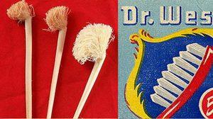 วิวัฒนาการแปรงสีฟัน