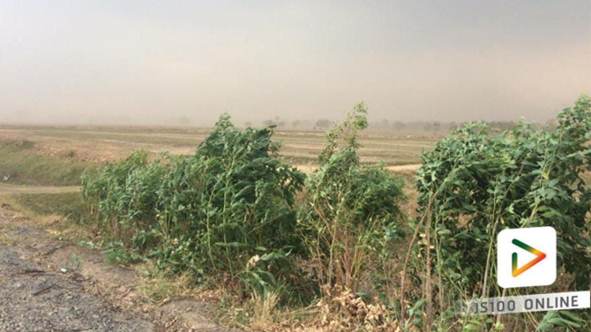 คลิปพายุทะเลทรายอ.เกษตรวิสัย จ.ร้อยเอ็ด (07-03-61)
