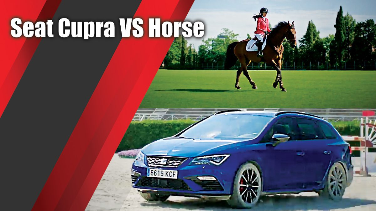 Seat Cupra VS Horse