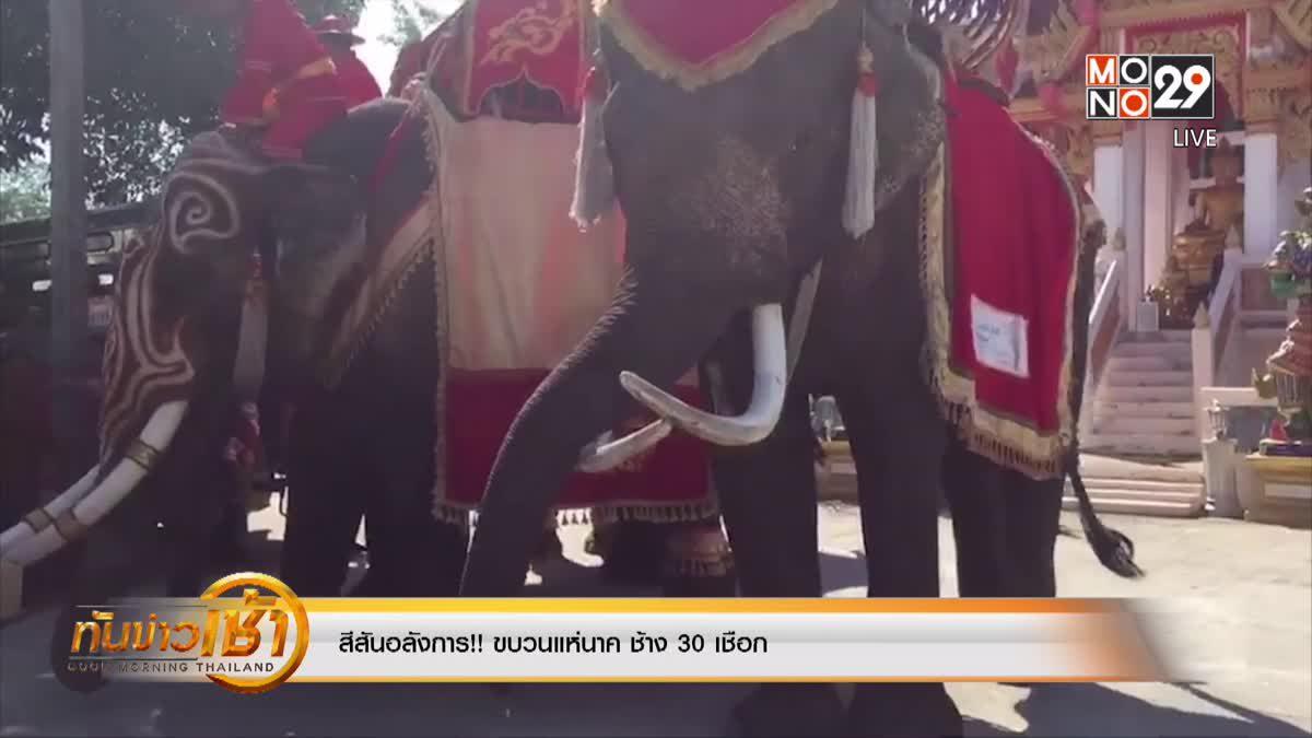 สีสันอลังการ!! ขบวนแห่นาค ช้าง 30 เชือก