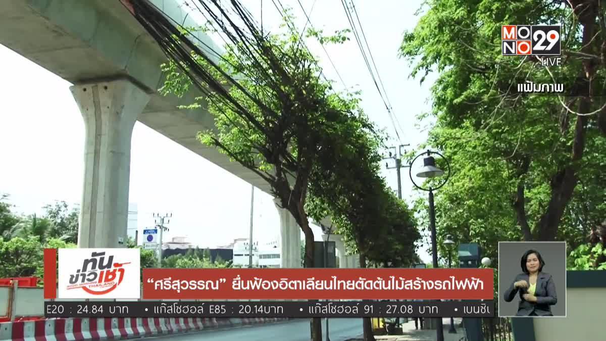 """""""ศรีสุวรรณ"""" ยื่นฟ้องอิตาเลียนไทยตัดต้นไม้สร้างรถไฟฟ้า"""