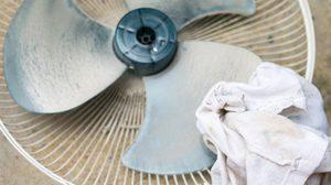 อย่าปล่อยให้ฝุ่นเกาะหนา! วิธีทำความสะอาดพัดลม ด้วยตัวเอง ใน 15 นาที
