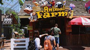 พาเที่ยว! สวนสัตว์ ใน สวนสนุกดรีมเวิลด์