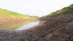 ภัยแล้งลามหนัก! อ.เนินขาม น้ำแห้งขอดพื้นที่เกษตรเริ่มถูกทิ้งร้าง