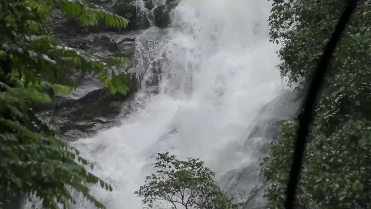 จ.ตรัง เตือนนักท่องเที่ยว ห้ามเล่นน้ำตกหวั่นน้ำป่าไหลหลาก