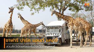สวนสัตว์เปิด ซาฟารี ปาร์ค แอนด์ แคมป์
