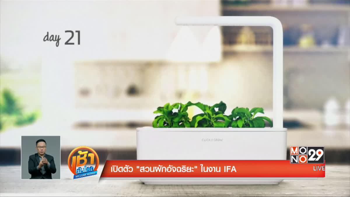 """เปิดตัว """"สวนผักอัจฉริยะ"""" ในงาน IFA"""