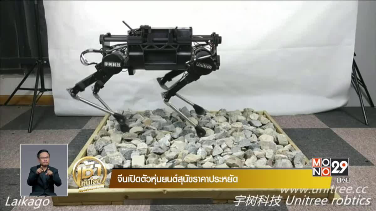 จีนเปิดตัวหุ่นยนต์สุนัขราคาประหยัด