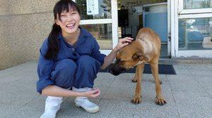 ผอ.สถานสงเคราะห์สัตว์ ฆ่าตัวตาย เครียด-รู้สึกผิด ต้องทำการุณฆาตสุนัข