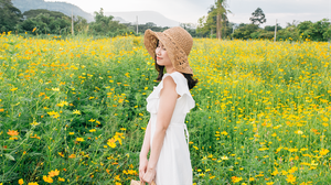 ทุ่งดอกคอสมอส บานสะพรั่ง ในวันฝนพรำ ที่ The Verona Tub Lan จ.ปราจีนบุรี