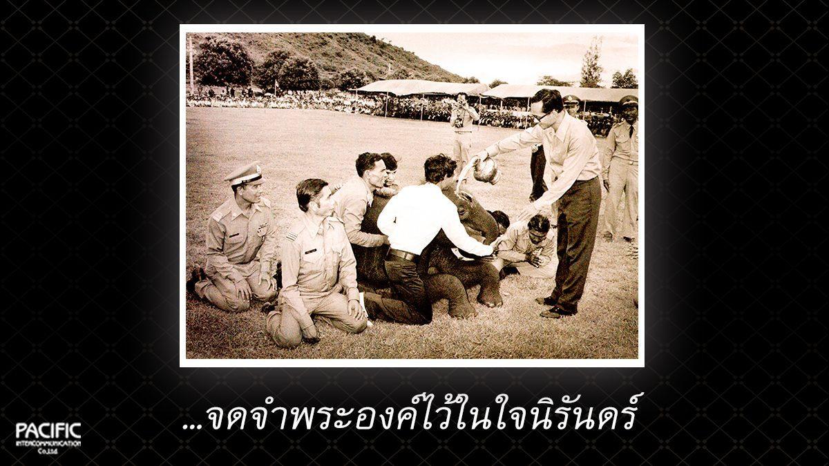 39 วัน ก่อนการกราบลา - บันทึกไทยบันทึกพระชนมชีพ