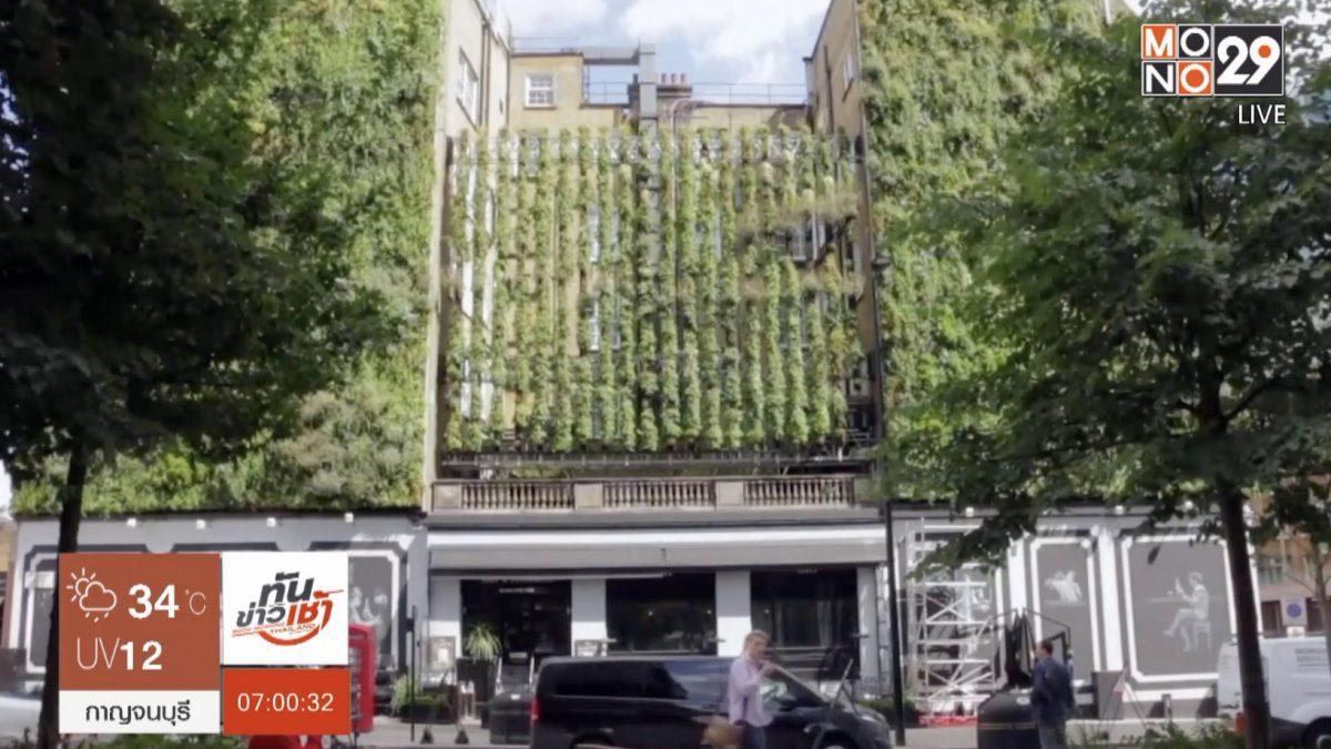 โรงแรมสีเขียวในอังกฤษ