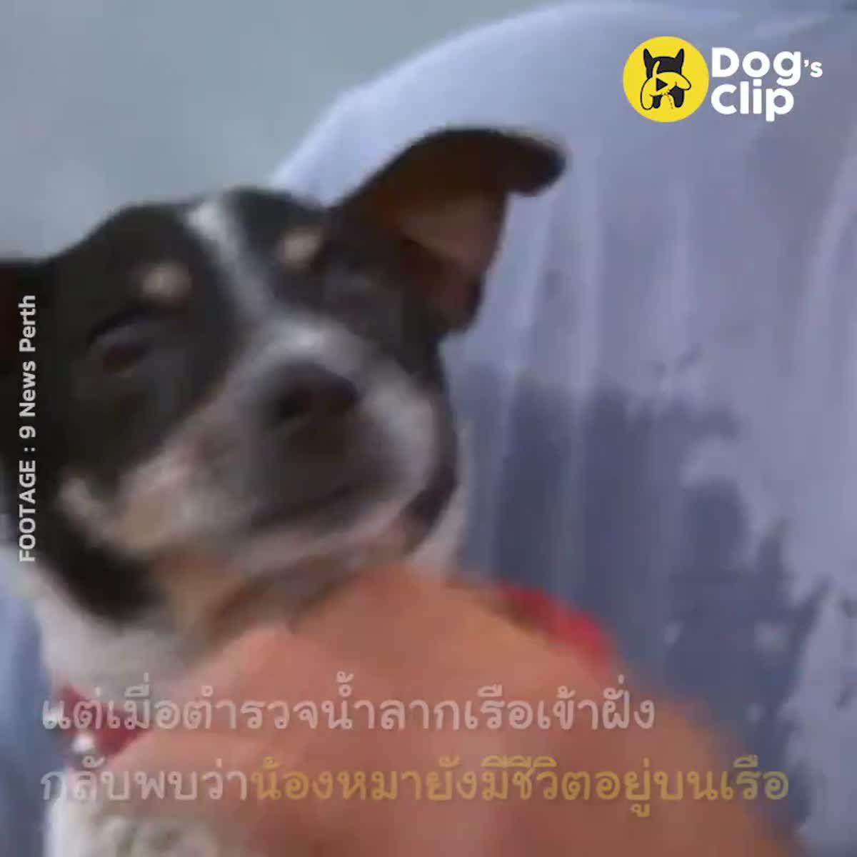 ดูท่าทางก็รู้ว่าคุณลุงรักน้องหมามากแค่ไหน