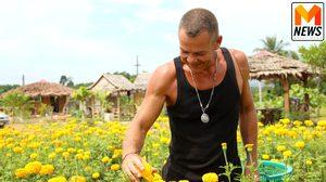 เขยเยอรมันหัวใจไทย หันใช้ชีวิตเกษตรกร ปลูกดอกดาวเรืองสร้างรายได้