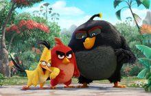 มาแล้ว! 3 ภาพแรกจาก Angry Birds The Movie