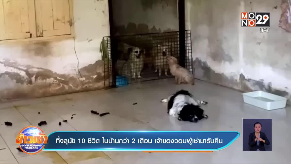 ทิ้งสุนัข 10 ชีวิต ในบ้านกว่า 2 เดือน เจ้าของวอนผู้เช่ามารับคืน