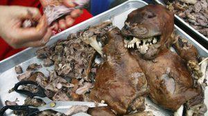 เกาหลีใต้ปิดตลาดค้าเนื้อหมาเตรียมตัวเป็นเจ้าภาพ 'โอลิมปิก'