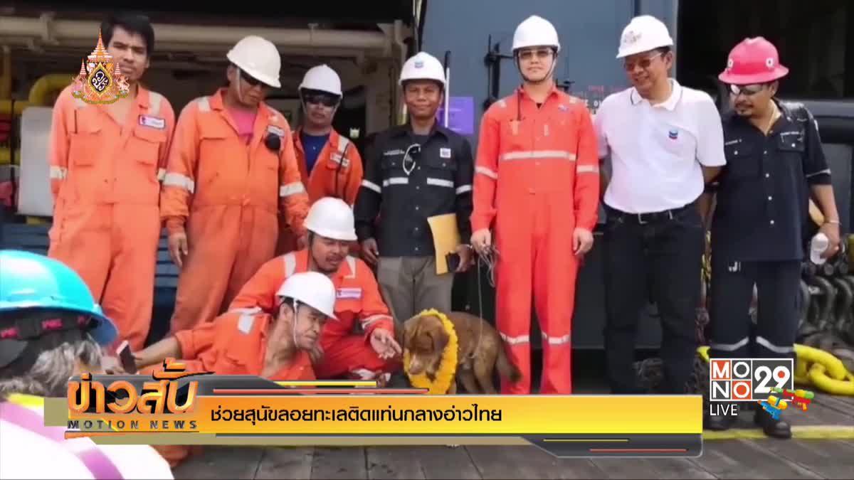 ช่วยสุนัขลอยทะเลติดแท่นกลางอ่าวไทย