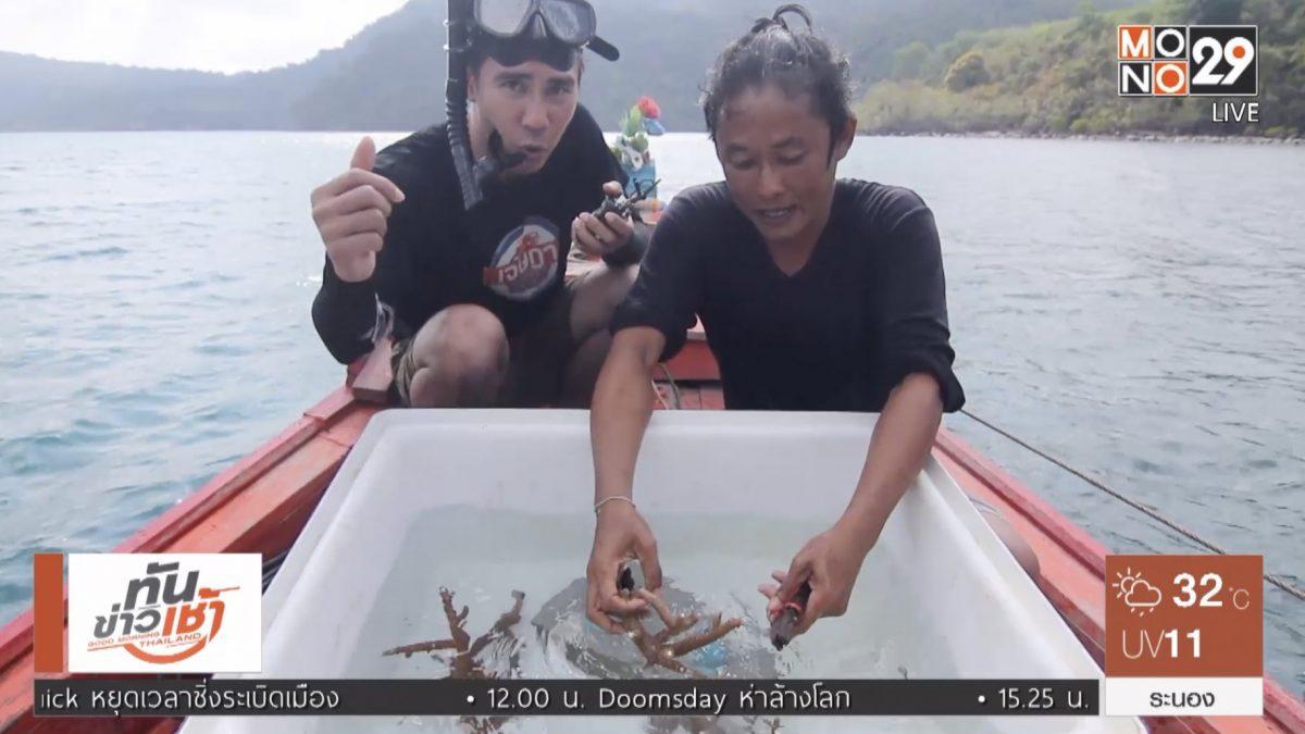 เจษฎาพาลุย : ดำน้ำปลูกปะการังเขากวาง จ.ตราด