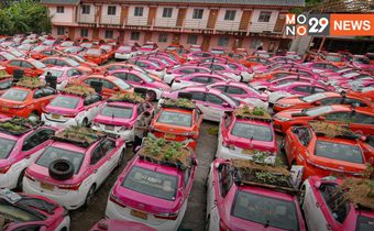 แท็กซี่ถูกทิ้งร้างยังไร้ทางออก ใช้ปลูกผักสวนครัว เพิ่มรายได้