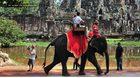 กัมพูชาแบน 'การขี่ช้าง'