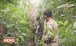 Five minutes Bighero : น.สพ.ภัทรพล มณีอ่อน HERO  ผู้พิทักษ์สัตว์ป่า ตอน 1/5