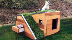 บ้านหมานอกบ้าน ก็ออกแบบให้รักษ์โลกได้! เป็นยังไงมาดู!