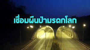 เปิดแล้ว ! ถนน-อุโมงค์ 'กบินทร์บุรี-ปักธงชัย' ต้นแบบทางเชื่อมผืนป่ามรดกโลกแห่งแรกของไทย
