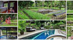 สโลว์ไลฟ์แบบมีระดับ ต้อง Narittaya Resort & Spa