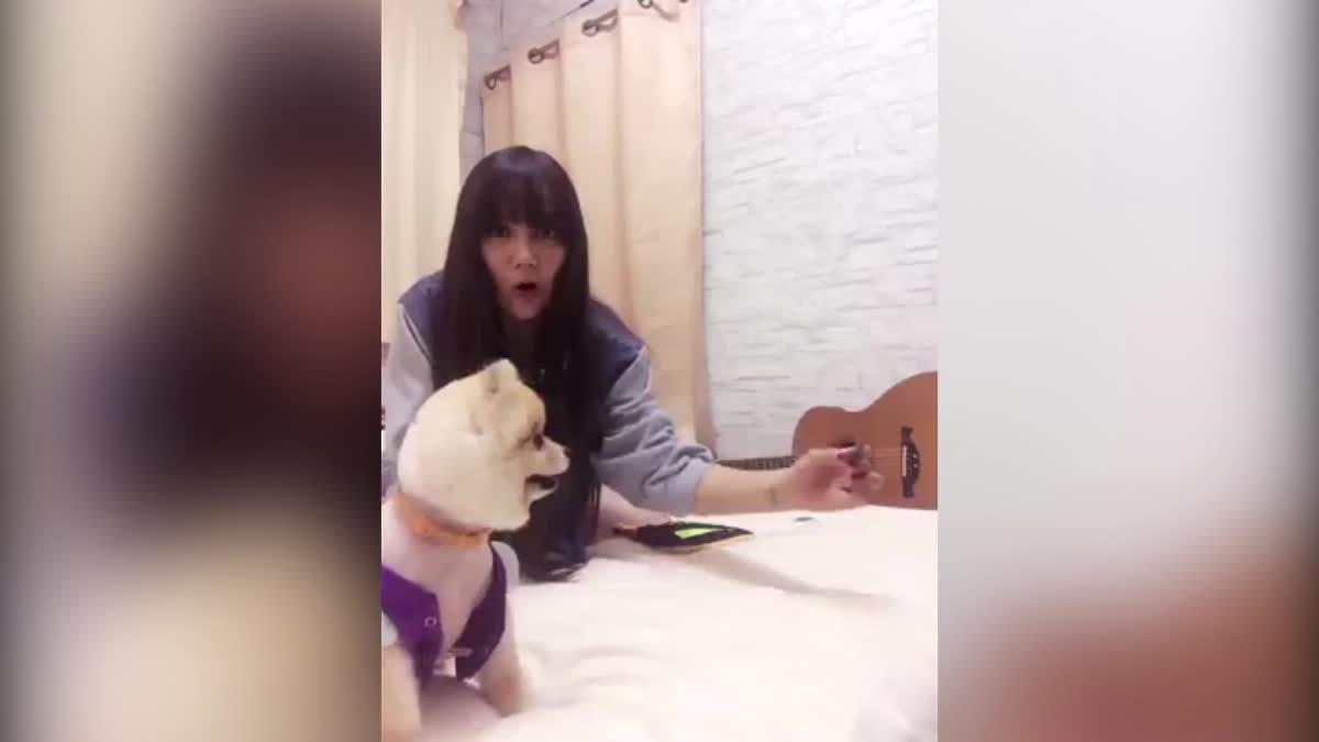 ดูความน่ารักของ น้องส้มจี๊ด กำลังเล่นกับน้องหมาตัวโปรด