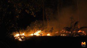 เจ้าหน้าที่ระดมกำลัง ดับไฟป่าในเขตอุทยานฯ ทั้งวันทั้งคืน