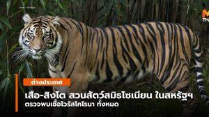 'สิงโต-เสือ' ในสวนสัตว์แห่งชาติสหรัฐฯ ส่อแววติด 'ไวรัสโคโรนา'