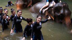 เกาะติด 25 สาวงามMT2017 เก็บตัววันที่ 2 สัมผัสธรรมชาติและความน่ารักของช้างไทย