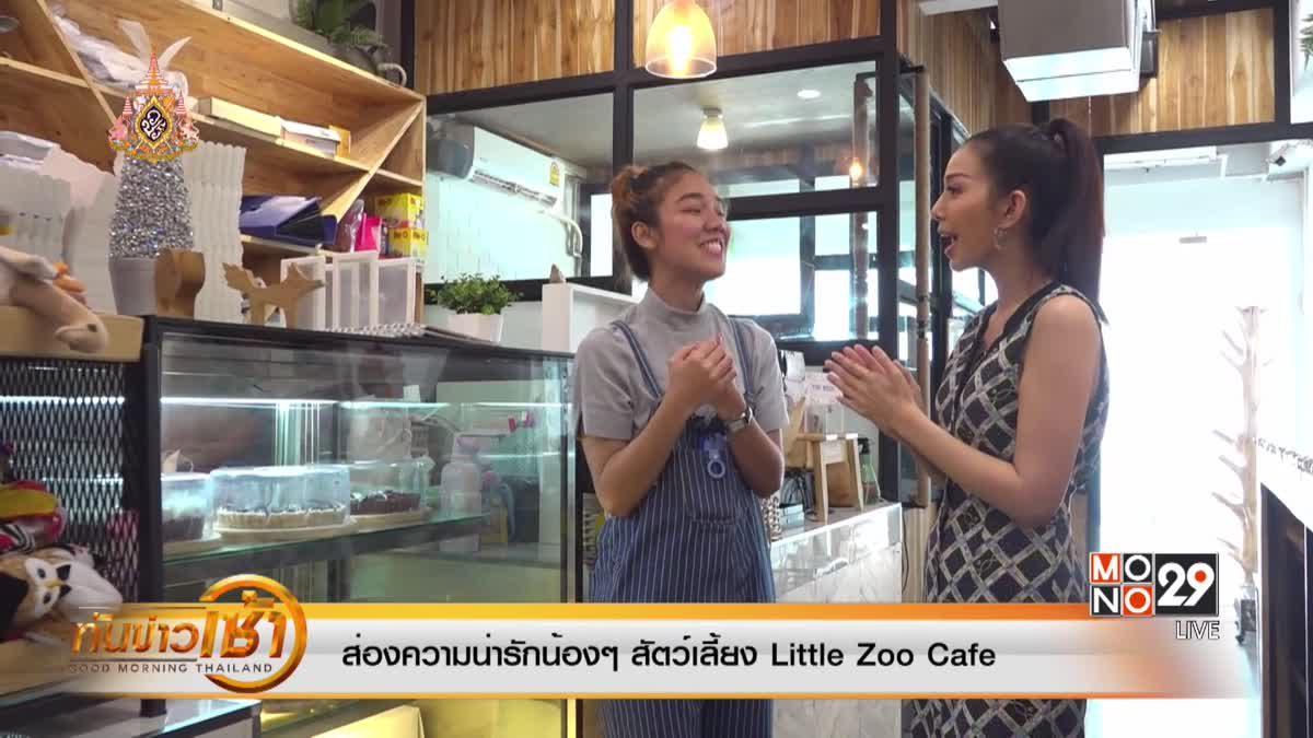 ส่องความน่ารักน้อง ๆ สัตว์เลี้ยง Little Zoo Cafe