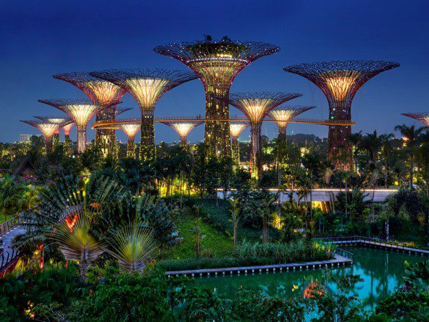 13-gardens-by-the-bay-gardens-in-singapore