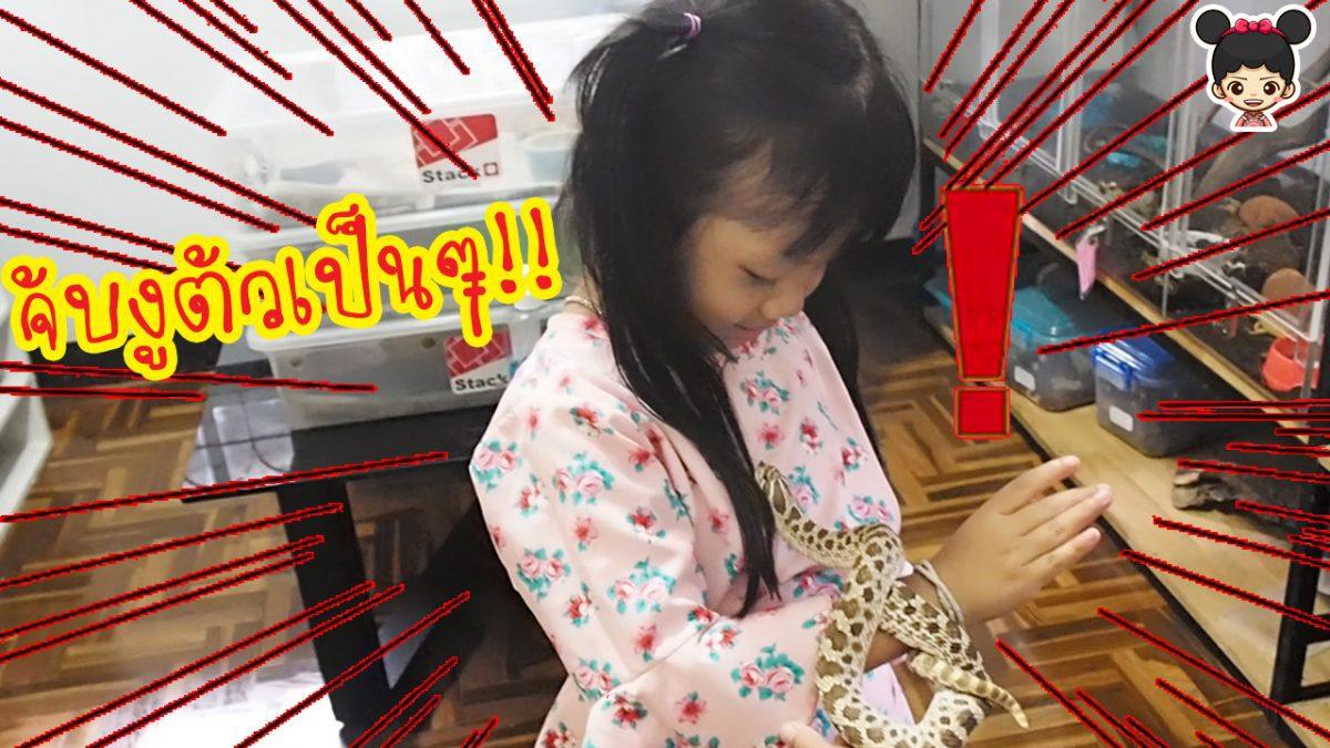 น้องดีไซน์ ไปเที่ยวดูสัตว์แปลกๆ | จับงูตัวเป็นๆครั้งแรก เลื้อยบนแขนเลย เสียวมาก