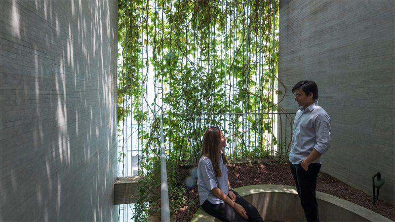 ม่านต้นไม้ facadeเบาแดดทอนมลพิษบ้านตึกแถวในเมือง