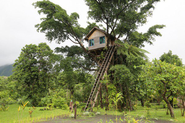 Tree House, Vanuatu